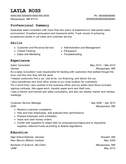 Sales Consultant resume template New Mexico