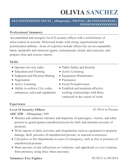 Level II Security Officer resume template New Mexico
