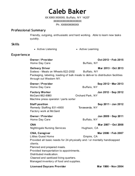 Owner resume example New York