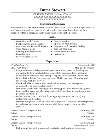 CDL Truck Driver resume format New York