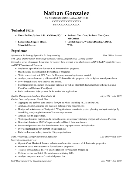 Information Technology Specialist 2 Programming resume example New York