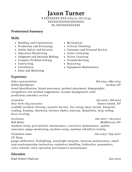 Sales representitive resume template New York