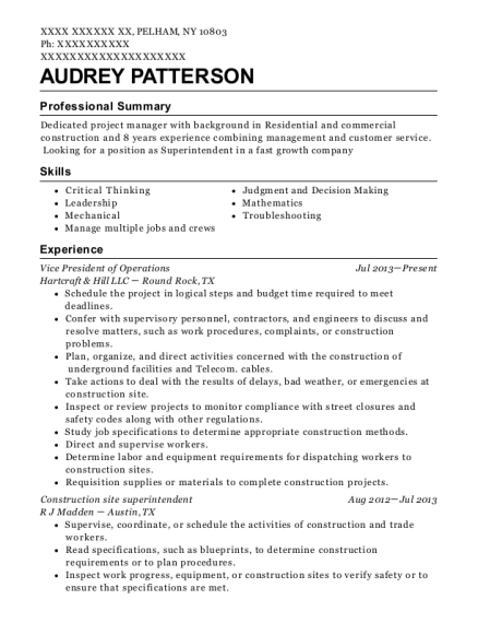Vice President of Operations resume format New York