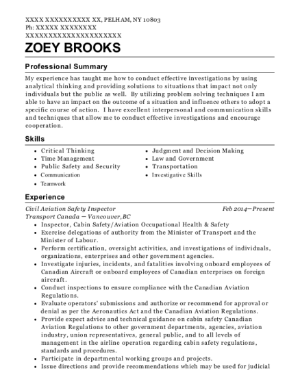 Civil Aviation Safety Inspector resume example New York