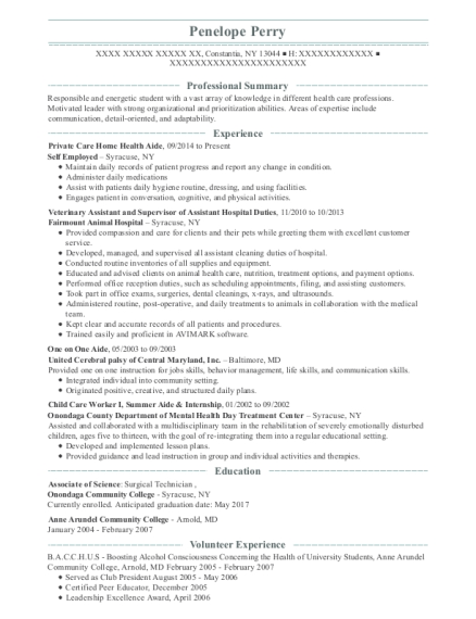 Private Care Home Health Aide resume template New York