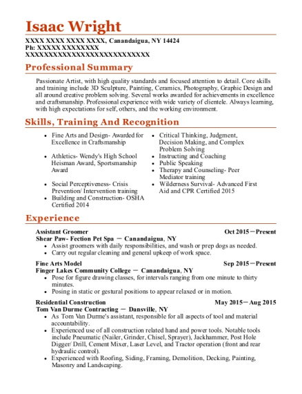 Assistant Groomer resume format New York