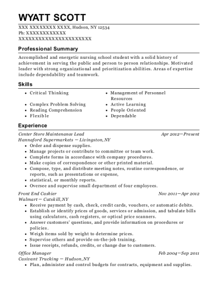 Center Store Maintenance Lead resume template New York