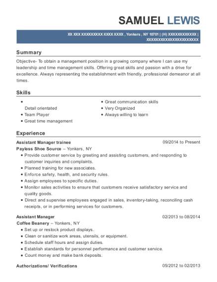 Assistant Manager trainee resume format New York