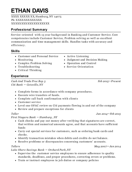 Cash And Trade Proc Rep 3 resume template New York