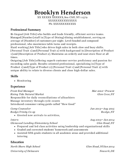 Front End Manager resume format New York