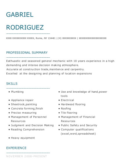 Developmental service assistant resume sample New York