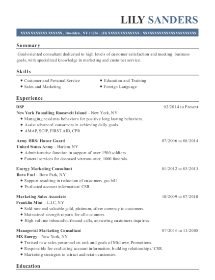 DSP resume example New York