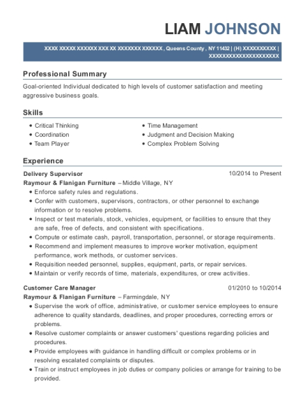 Delivery Supervisor resume example New York