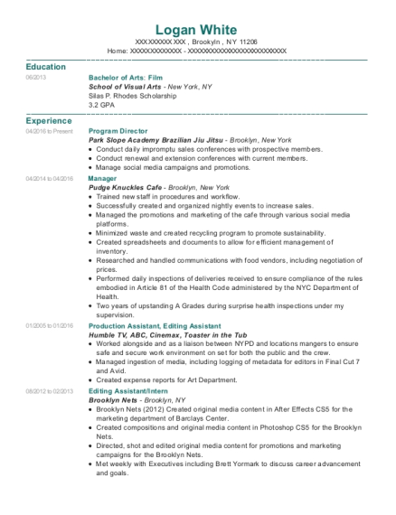 Program Director resume format New York