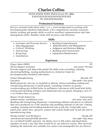 Direct Support assistant resume template New York