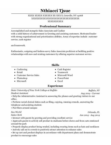 Student Assistant resume example New York