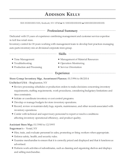 Store Group Inventory Mgr resume template New York