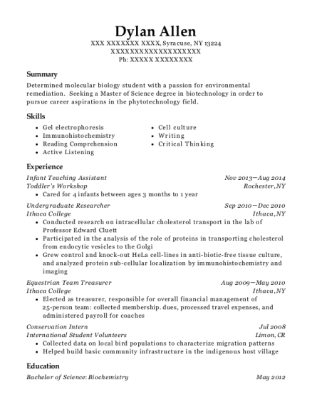 Infant Teaching Assistant resume format New York