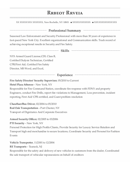 Fire Safety Director resume format New York