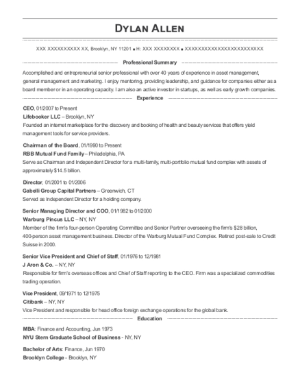 CEO resume format New York