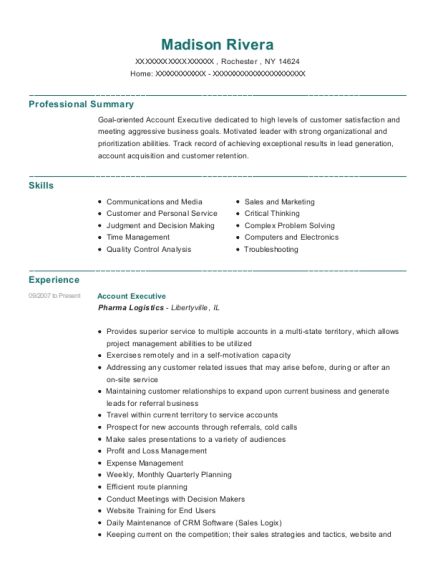 Account Executive resume template New York