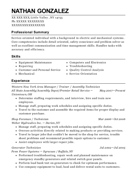 Western New York Area Manager resume example New York
