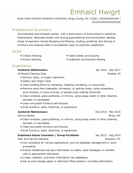 Substance Abuse Counselor resume template New York