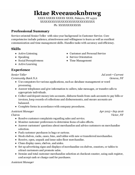 Senior Teller resume sample New York