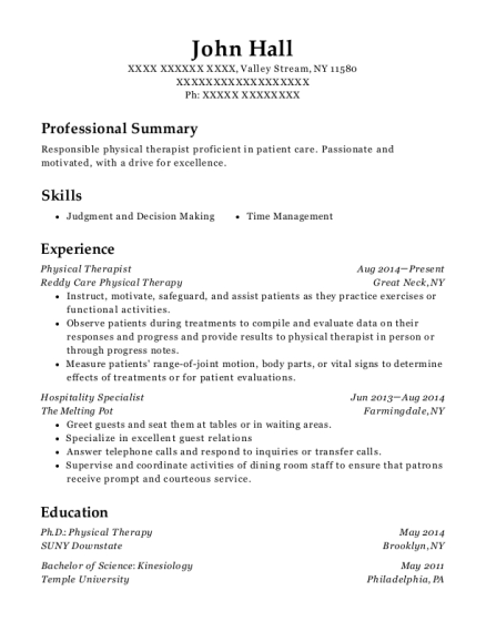 Physical Therapist resume format New York