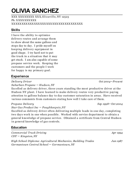 Delivery Driver resume sample New York