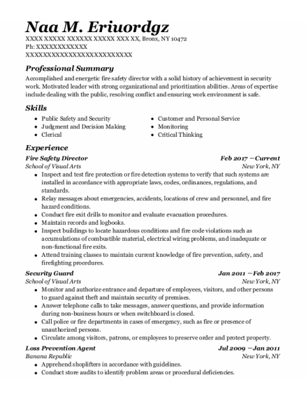Fire Safety Director resume example New York