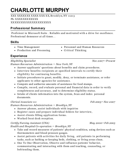 Eligibility Specialist resume template New York