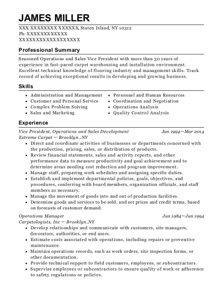 Vice President resume sample New York