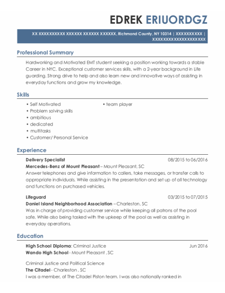 Delivery Specialist resume template New York