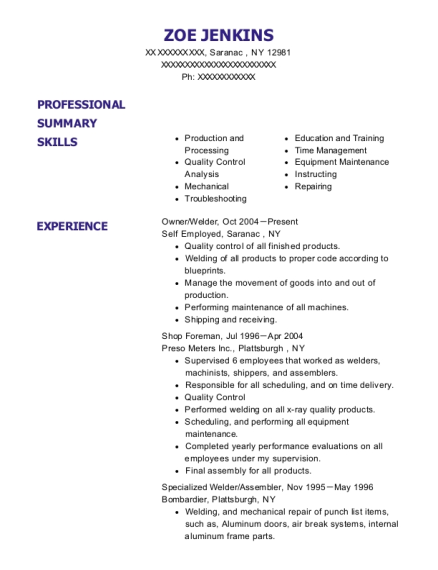 Owner resume sample New York