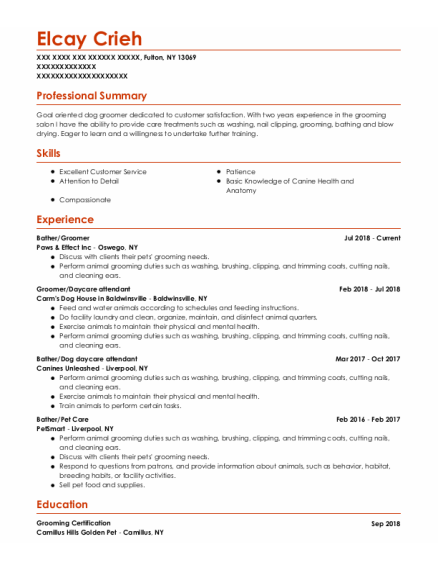 Bather resume template New York
