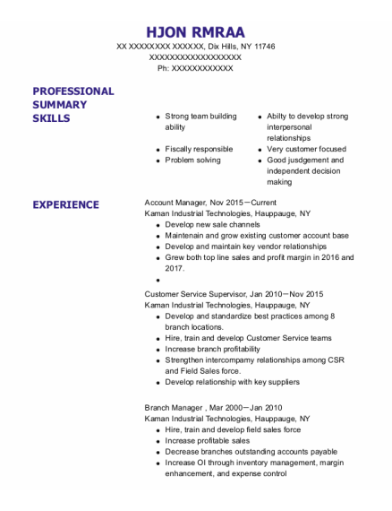 Account Manager resume template New York