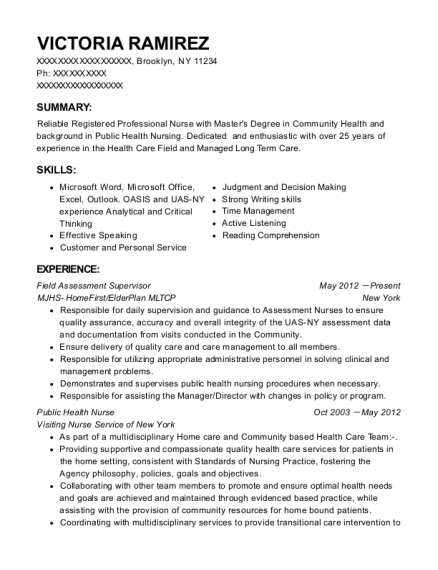 Field Assessment Supervisor resume format New York