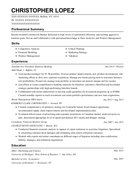 Assistant Vice President resume template New York