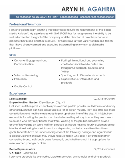 Sales Manager resume template New York