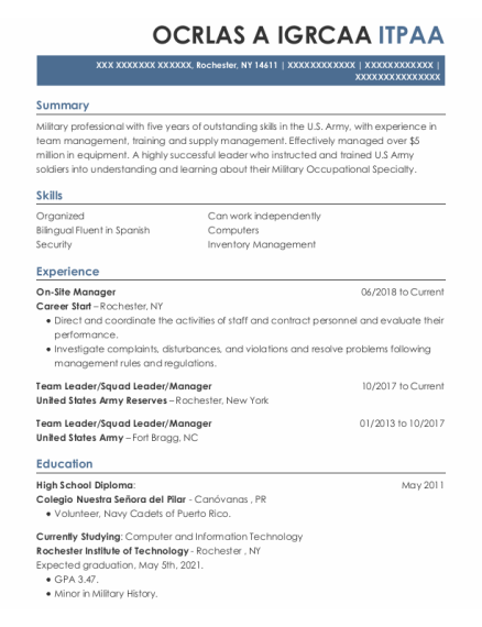 Team Leader resume sample New York