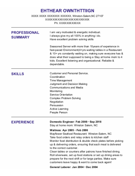 Domestic Engineer resume example North Carolina