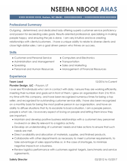 Team Lead resume sample North Carolina