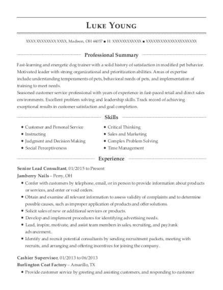 Senior Lead Consultant resume example Ohio
