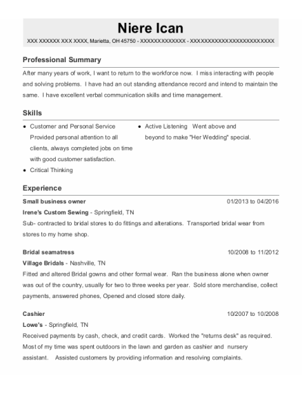 Small Business Owner resume template Ohio