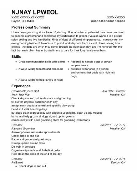 Groomer resume template Ohio