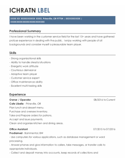 Owner resume template Oregon
