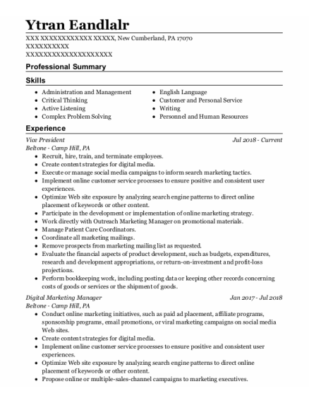 Vice President resume example Pennsylvania