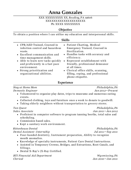 Domestic Engineer resume sample Pennsylvania