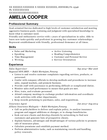 Sales Supervisor resume format Pennsylvania